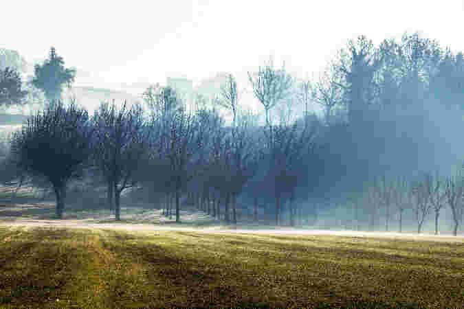 immagini del sannio rurale 2